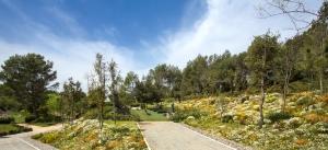 Cementerio Comarcal Parc de Roques Blanques