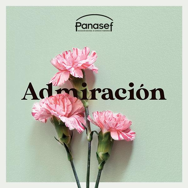 Admiración